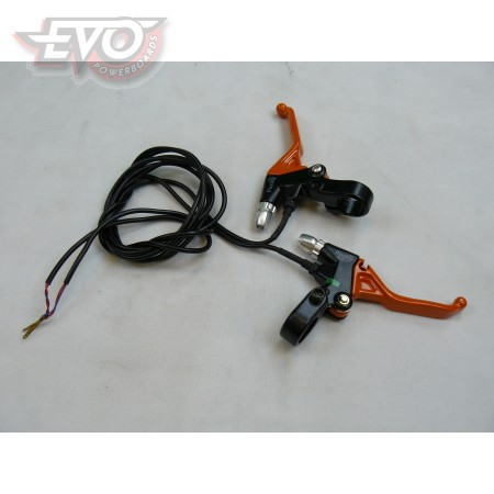 Brake Lever Switches Assembly EvoMotion 300SX