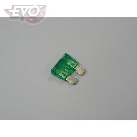 Fuse 30 Amp Standard