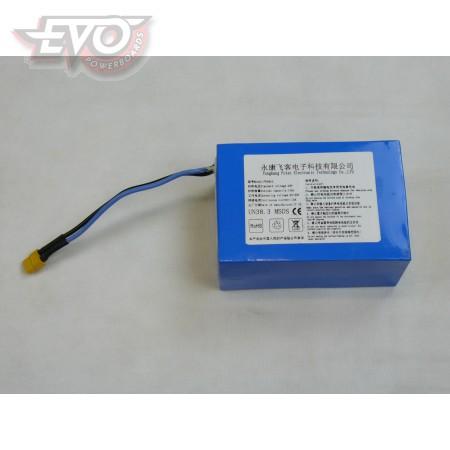 Battery Lithium 36V EvoMotion 300SX
