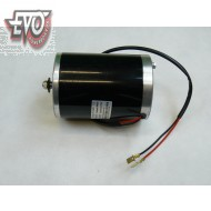 Motor 36V 1000W