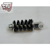 Suspension Assembly Rear Evo ES06